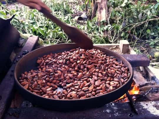 Cacao Beans Roasting In A Pan