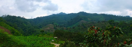 A View Across A Valley In Ecuador