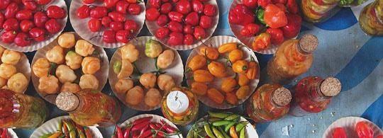 Plates of Fruit in Brazil