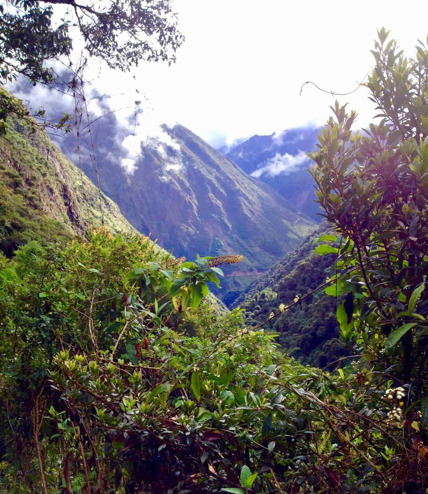 Views on the Inca Jungle trek