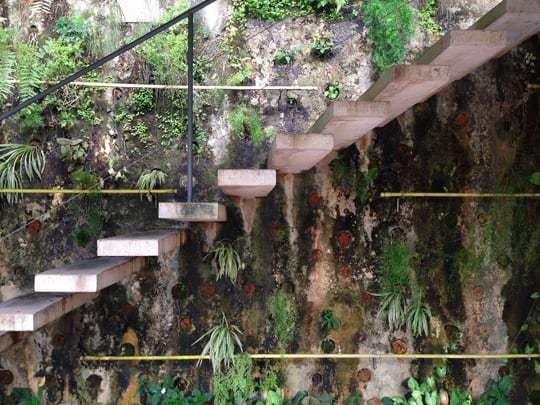 Cement Steps Going Up A Wall With Lots of Plants Growing Out of it at a Hostel in Sao Paulo