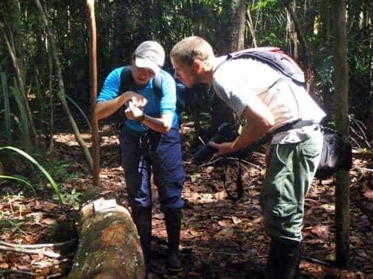 EDIT - Examining Monkey Scats in Amazon