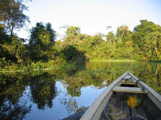 The View Off The Front Of A Boat On The Amazon