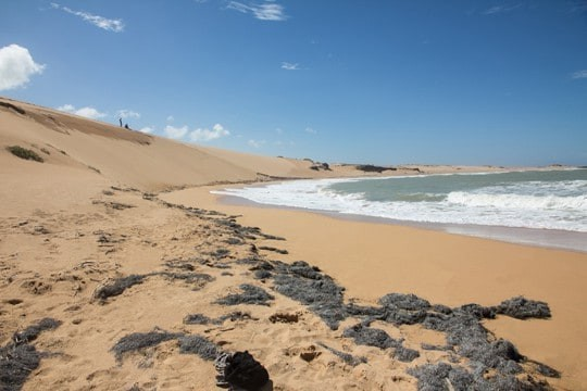 EDIT - Cabo_blog_SA_1
