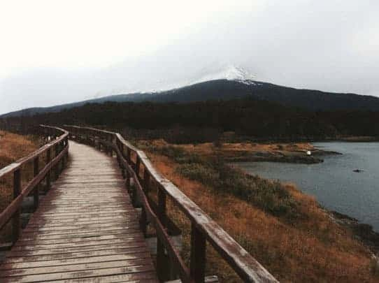A Wooden Bridge Next to the Water