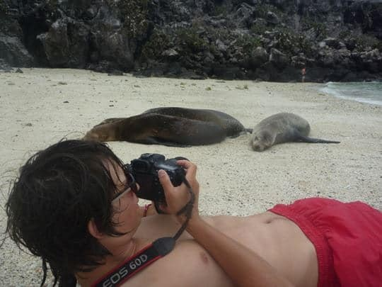 A Man Photographs Sea Lions On The Beach in The Galapagos