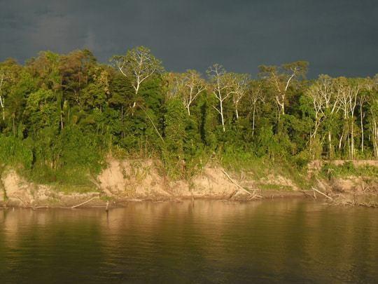 bankside river