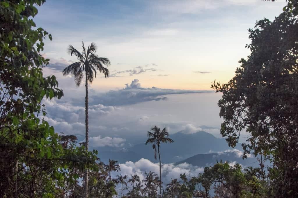 Cerro Kennedy views