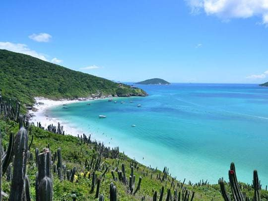 A Hill With Cacti On Leading To The Beach in Arraial do Cabo