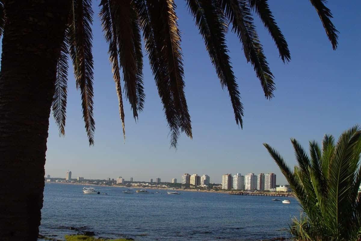 Skyscrapers seen across the water, Punta Del Este, Uruguay