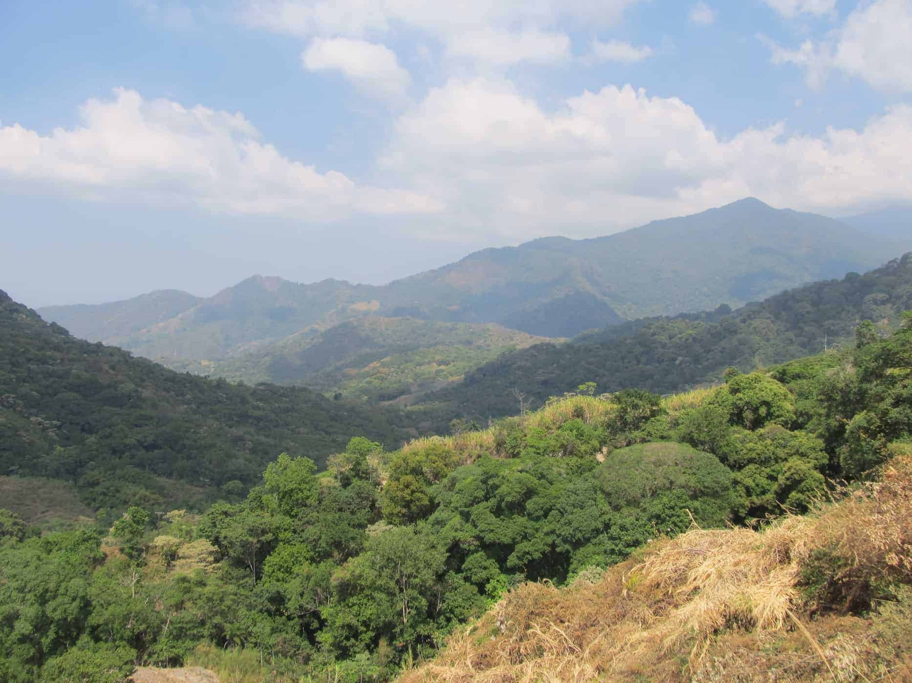 The lush mountain scenery around Minca, Colombia.