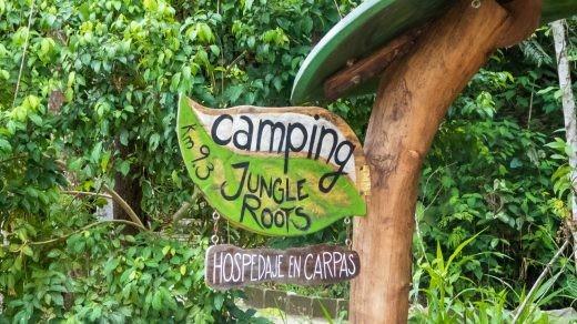 Jungle Roots Camping, Tena, Ecuador.