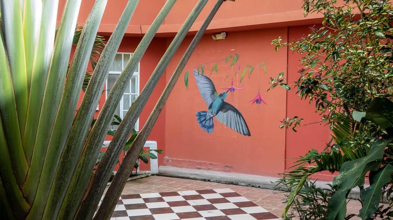 Hostal Tena Naui, Tena, Ecuador