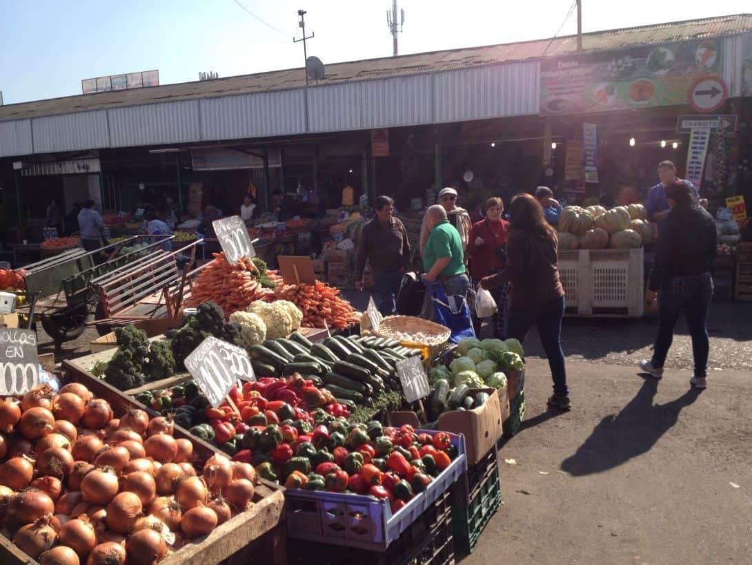 Vegetables at the Central Market - Santiago de Chile