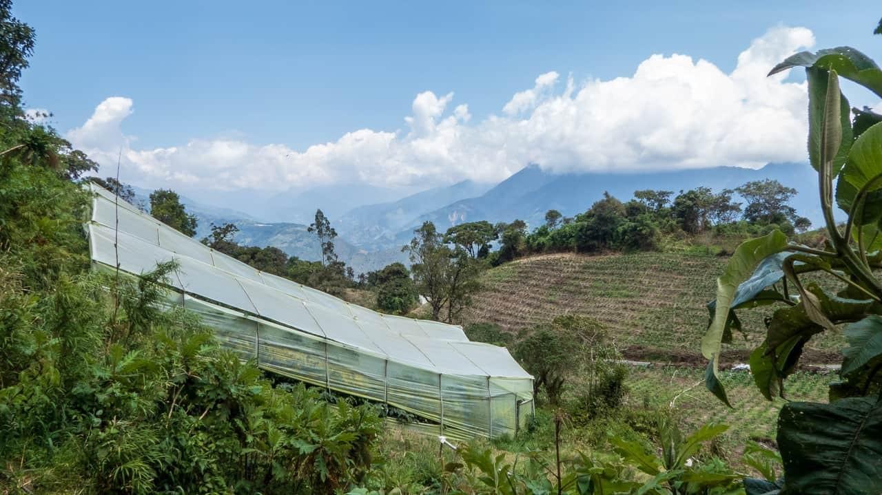 The greenhouse amidst planted hills in the farm. Baños, Ecuador
