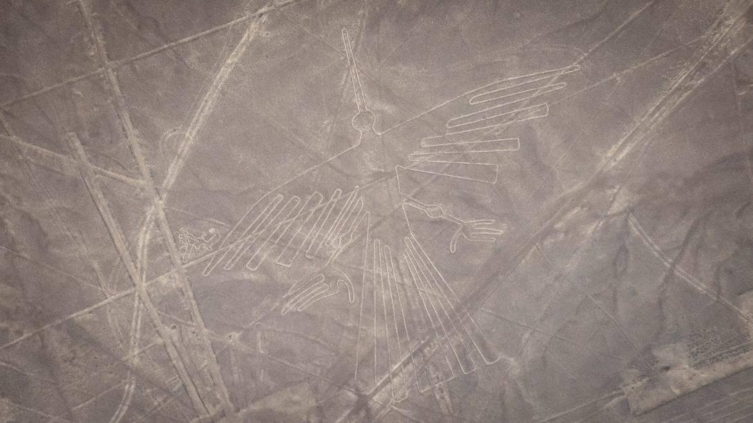 Nasca Lines: The Condor
