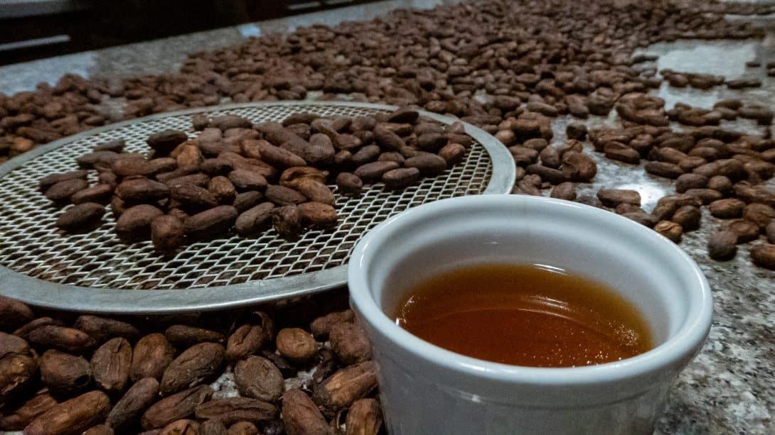 Chaqchao's Bean to Bar Chocolate Class, Arequipa