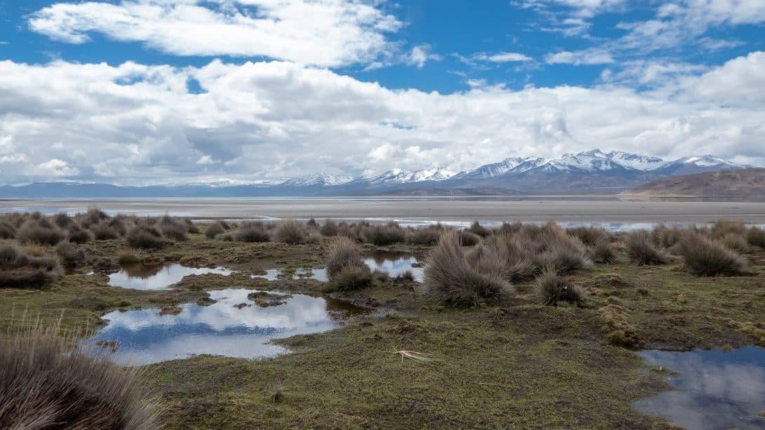 Salinas salt lagoon, located outside Arequipa.