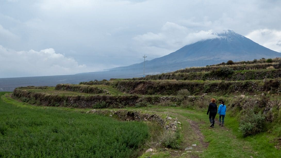 Agricultural terraces near Salinas Salt Lagoon