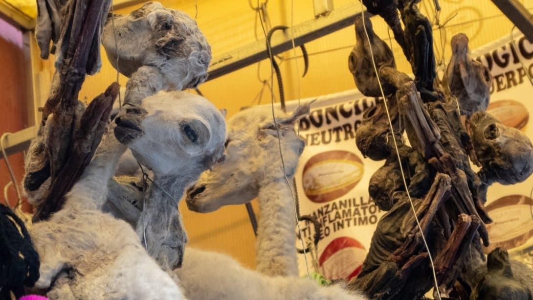 La Paz Witch Market