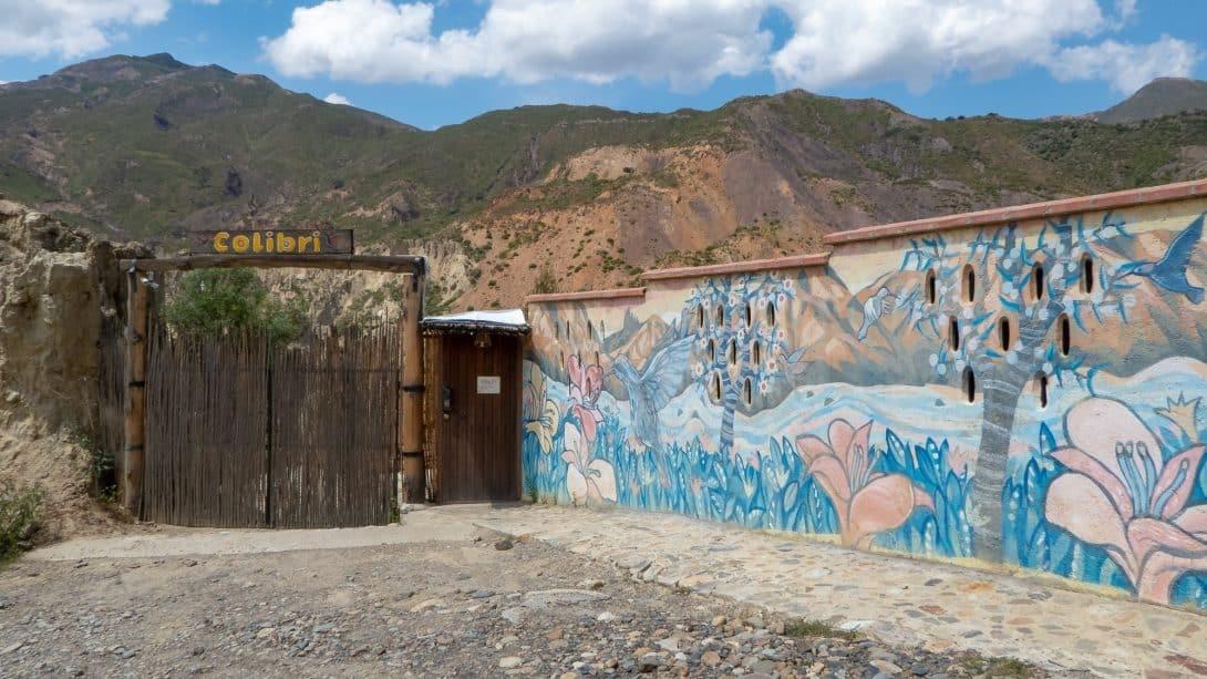 Colibri Camping - A Little Slice of Heaven Outside La Paz!