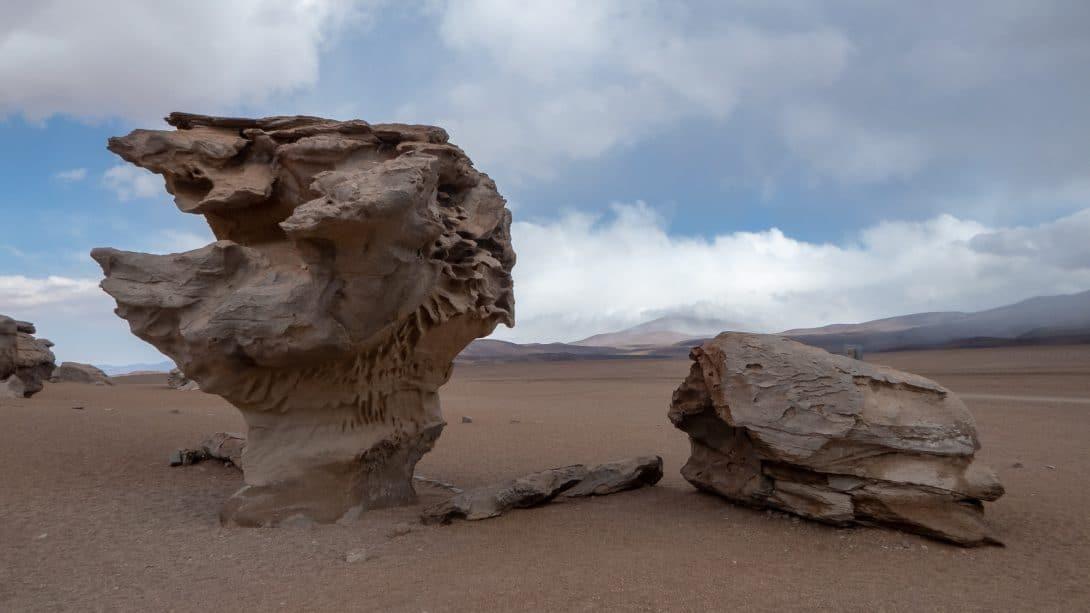 El Arbol de Piedra in Eduardo Avaroa National Reserve, Bolivia.