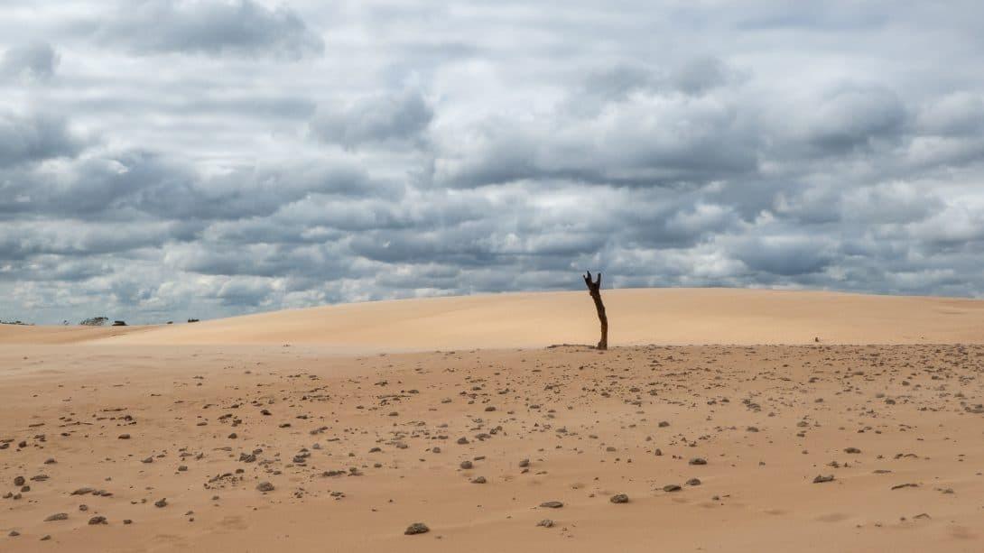 Sand dunes at Lomas de Arena
