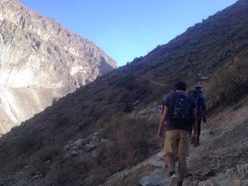 Guy trekking Colca Canyon
