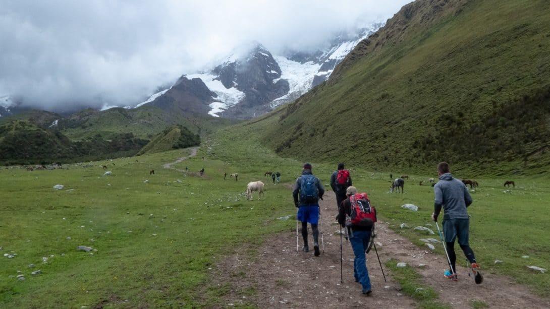 Group hike towards snowy mountain.