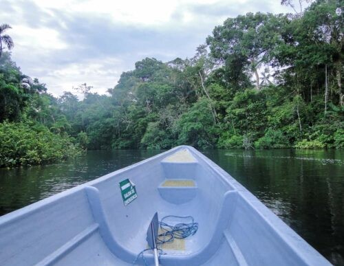 Canoe on jungle waterways