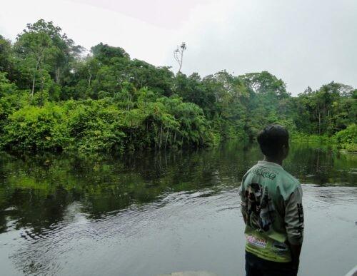 Man overlooks river in Cuyabeno