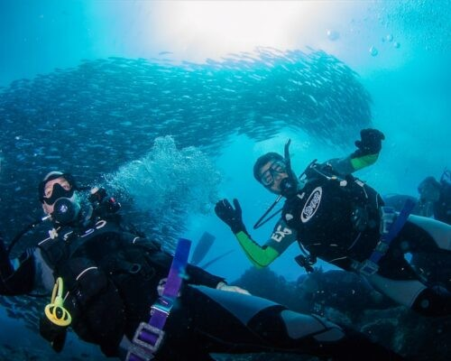 Two people dive underwater photo