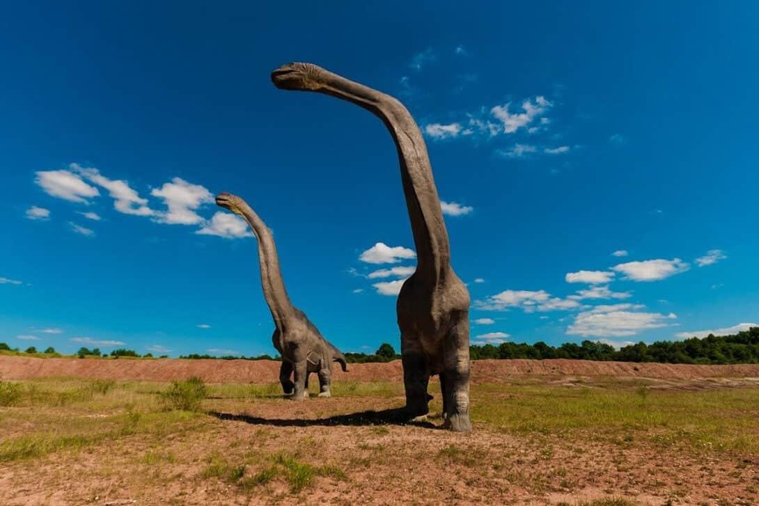 Big dinosaur with long neck